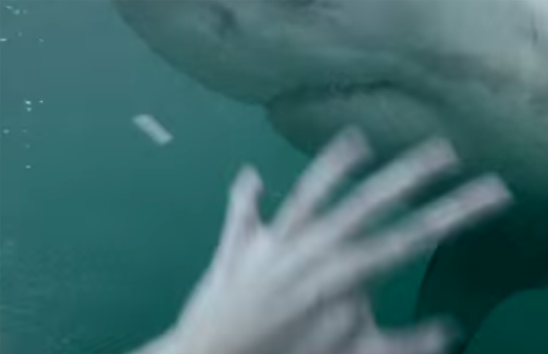 narkontakt-hai